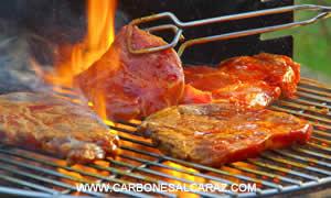 carbon de barbacoa en valencia