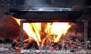 lena carbones alcaraz