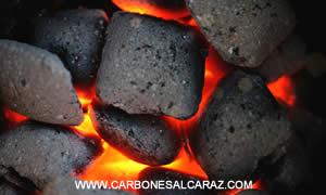 venta de carbon vegetal en valencia